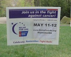 A lawn sign stands in a Hopkinton yard advertising the American Cancer Society's Relay for Life event which will take place May 11th-12th from 6pm-6am. Photo by Karissa Collins.